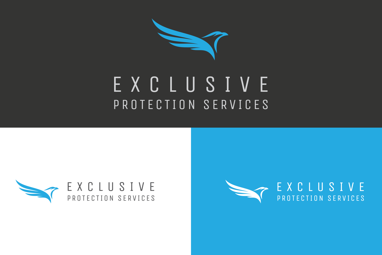 EPS, Exclusive Protection Services, EPS Logo Generations